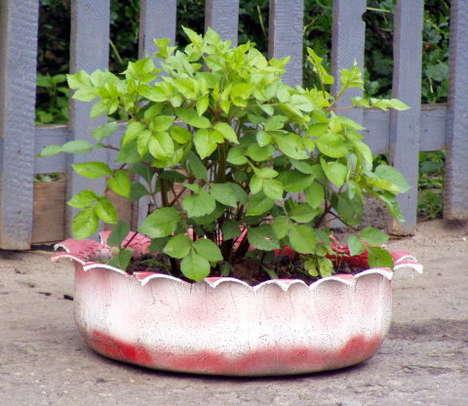 Cool creativity how to diy old tire garden ideas for Como decorar un jardin con macetas
