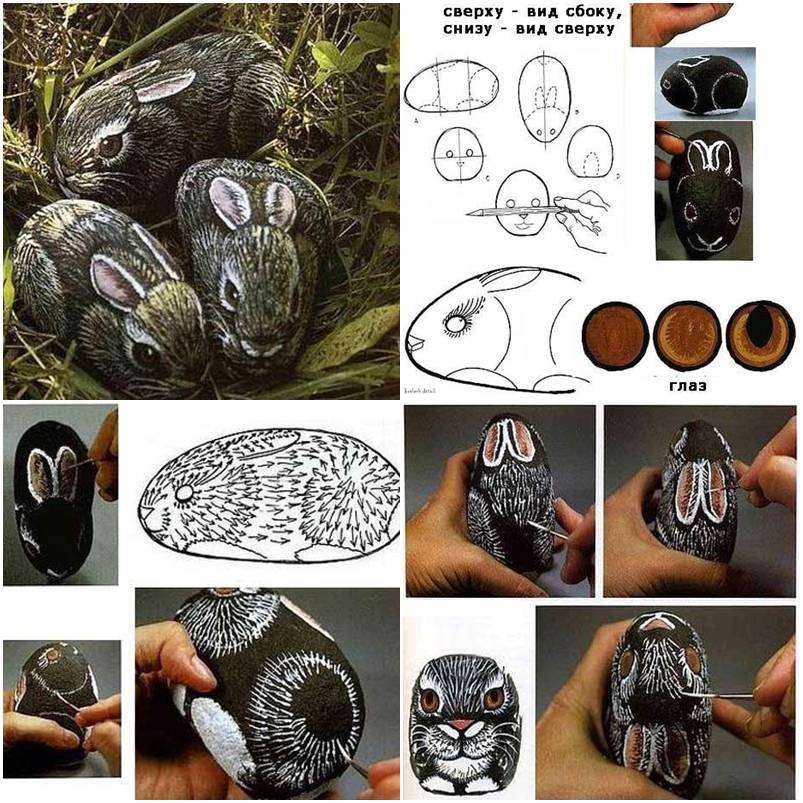 How To Transform A Stone To A Rabbit