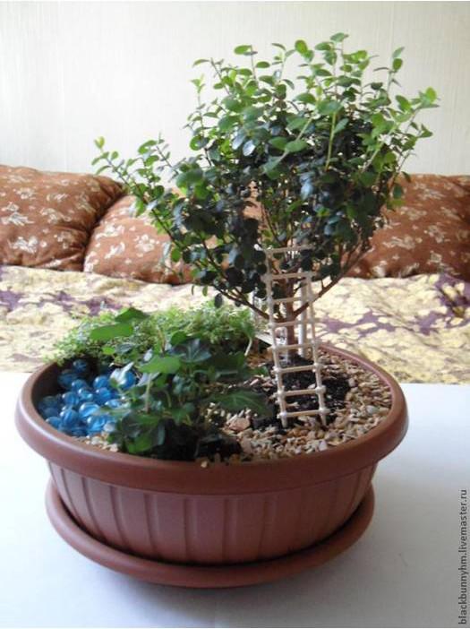 conte de mini-jardin-00-13