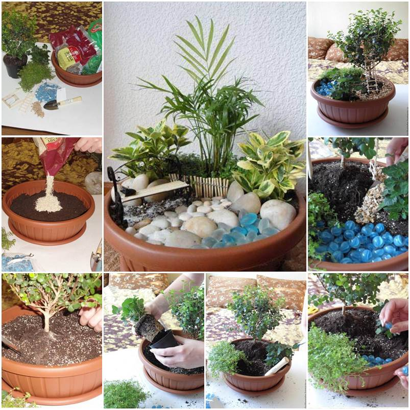 How to diy mini fairy garden for Jardin japonais miniature