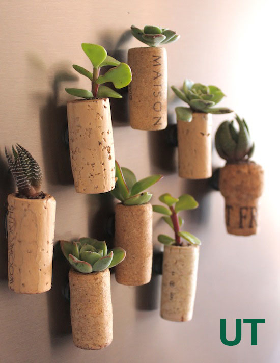 Cork-Planter-1