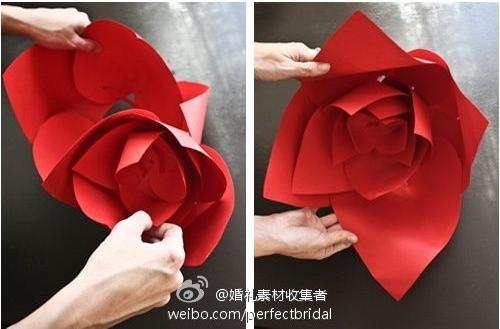 Wedding-Rose-0-5
