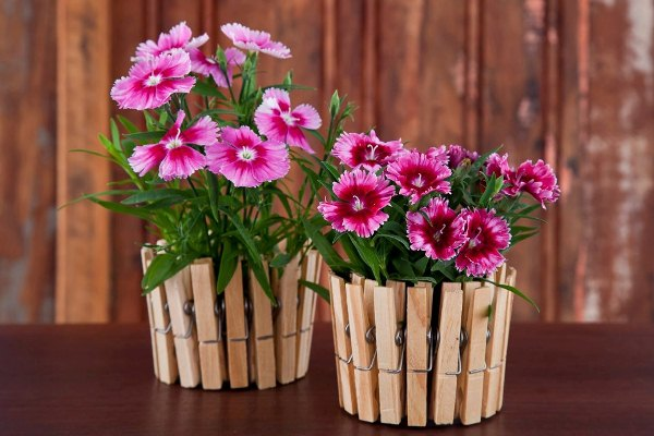 diy-make-flower-pot-with-clothespin-1