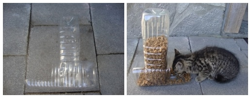 diy-plastic-bottle-pet-feeder-4
