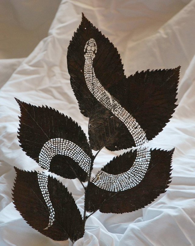 extraordinary-leaf-artwork-by-lorenzo-duran-3
