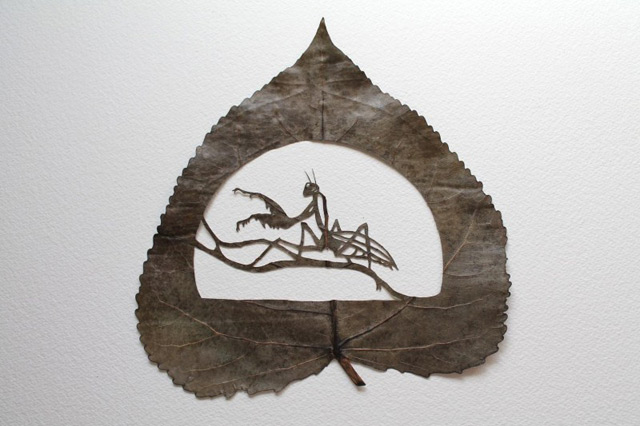 extraordinary-leaf-artwork-by-lorenzo-duran-4