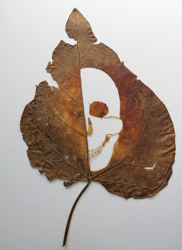 extraordinary-leaf-artwork-by-lorenzo-duran-6