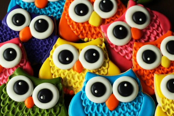 How to Make Super Cute Colorful Owl Cookies