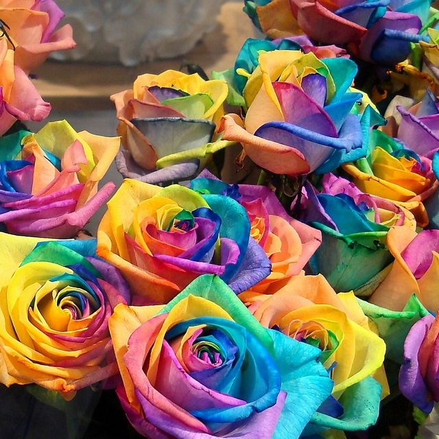 DIY Make Rainbow Roses