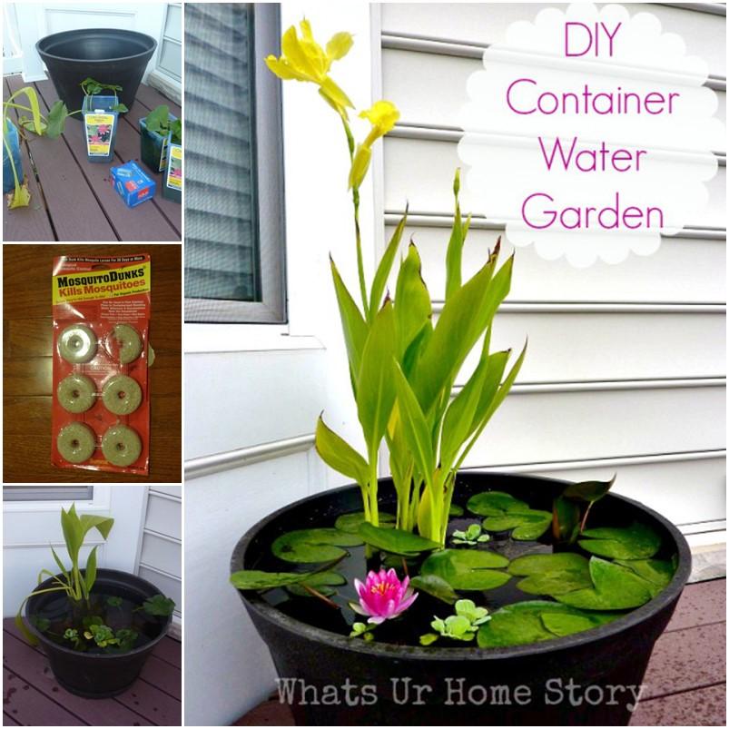 diy-container-water-garden