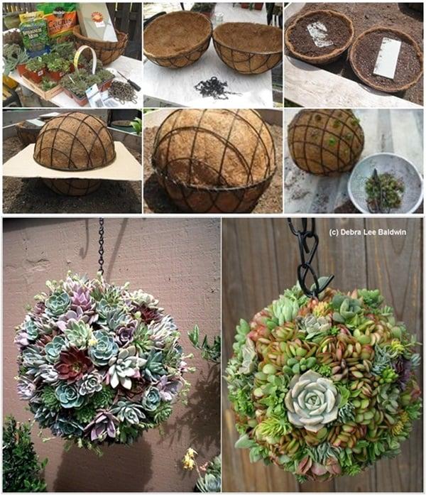 Diy succulent kissing ball for Sphere garden design