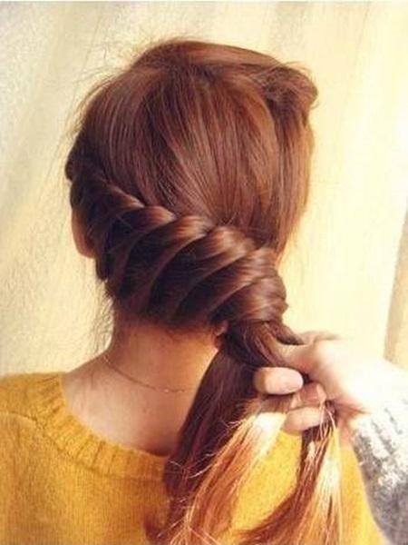 Diy Elegant Braided Hairstyle