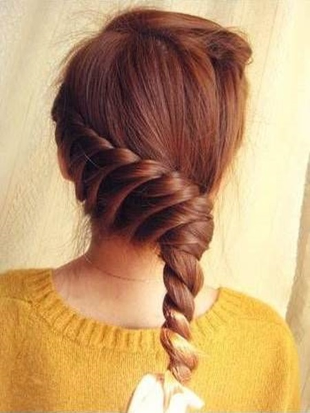 Diy Elegant Braided Hairstyle