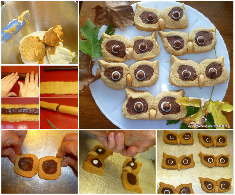 DIY Hoot Owl Peanut Butter Cookies