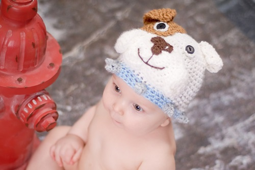 Animal Hat Crochet Patterns-buglldog
