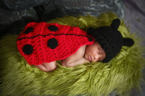 Crochet Lady Bug