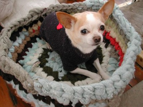 Make a Pet Bed from Recycled Sweaters