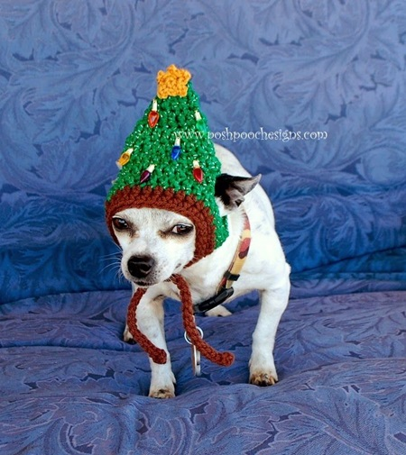 DIY Pet Hat With Pattern