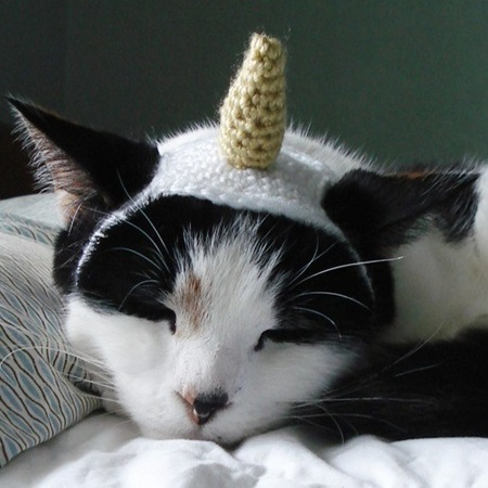 Crochet Cat Hat Pattern 3 Cool Creativities