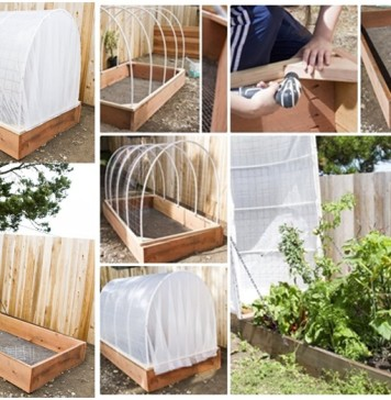 DIY Removable Covered Greenhouse to Protect Your Plants