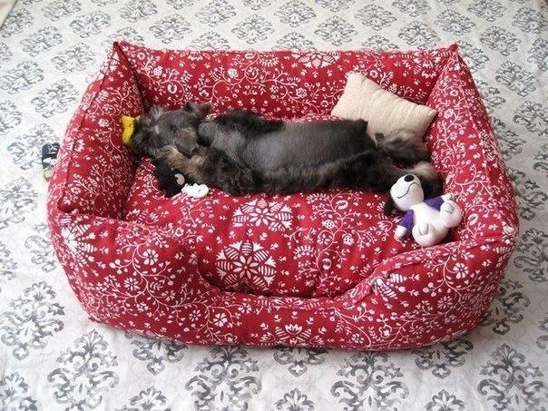 DIY Fabric Pet Sofa Bed