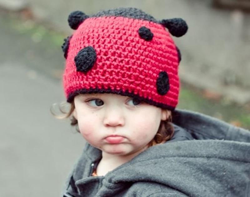 Animal Hat Crochet Patterns Ladybug Cool Creativities