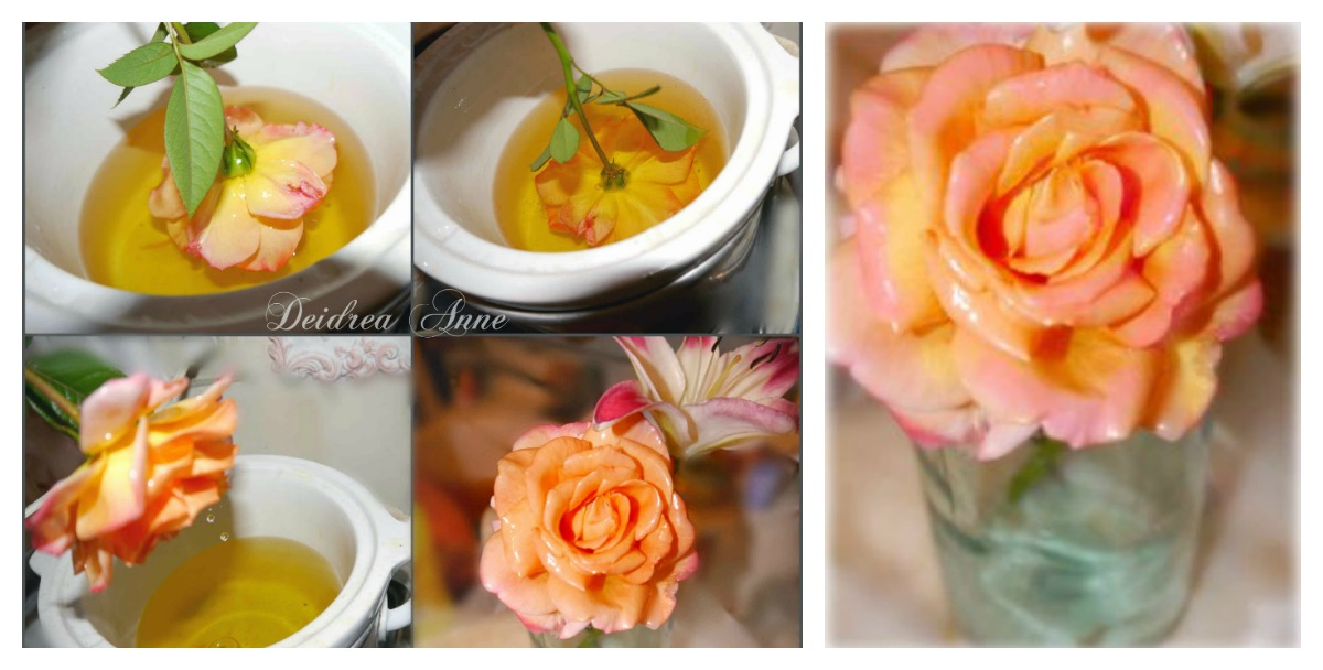How To Preserve Fresh Flowers With Wax
