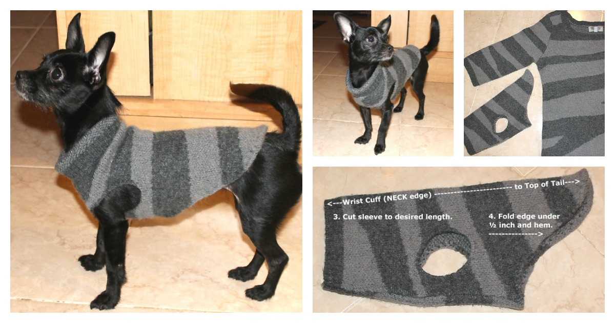 Diy Recycled Dog Sweater F Cool Creativities