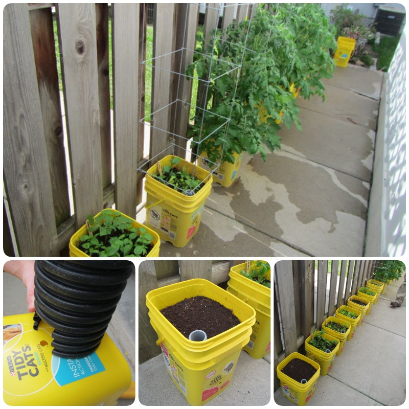 DIY Self-Watering Container Garden