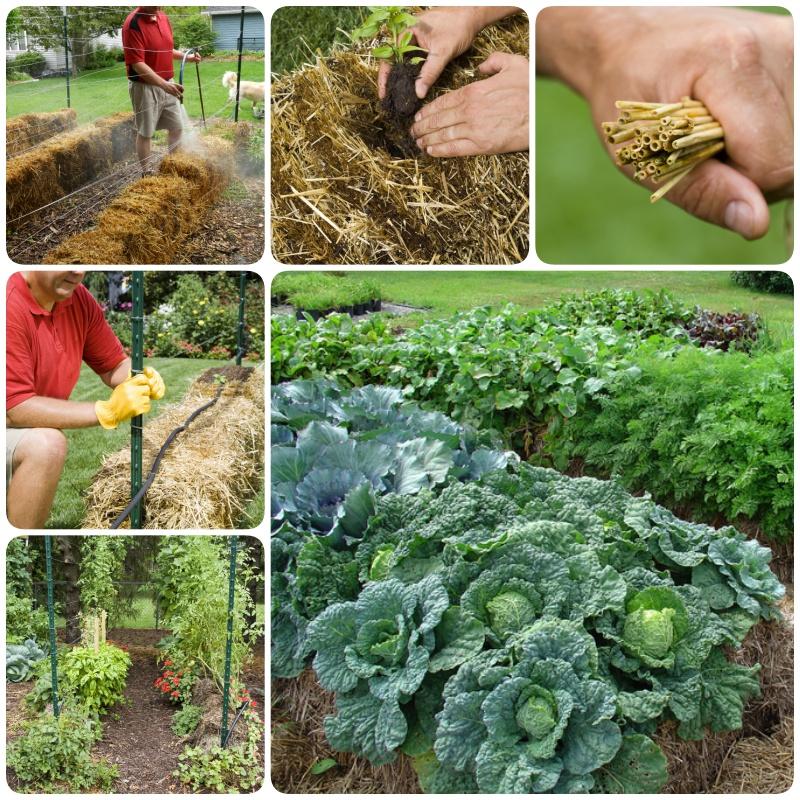 18 Diy Raised Garden Bed Ideas Page 3 Of 3