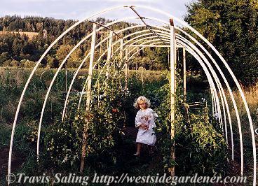 DIY PVC Garden Hoop House #PVC #Hoophouse # Garden