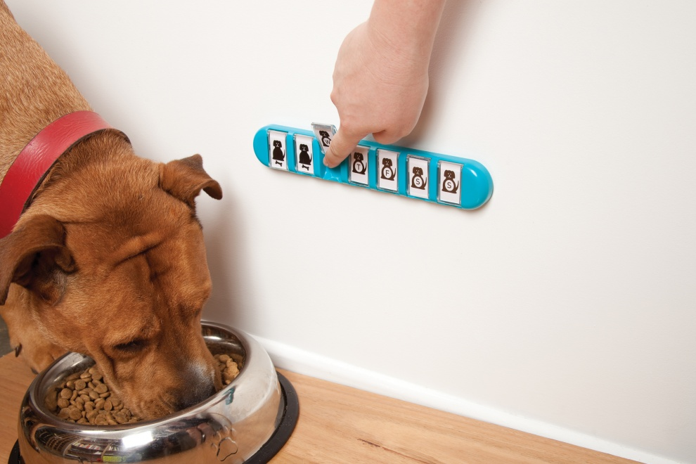 20 ingenious things for your dog you had no idea you needed