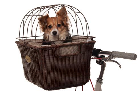 Nantucket Somerset Pet Basket