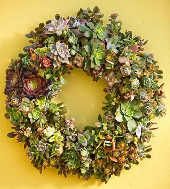 How to Make a Living Succulent Wreath #Succulent #Wreath