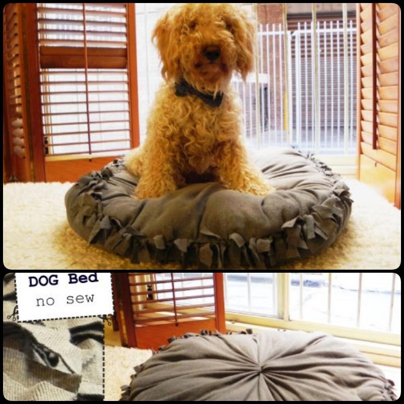 20+ Adorable DIY Pet Bed Ideas-Super Easy NO SEW