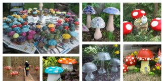 Garden Creative Mushroom Projects