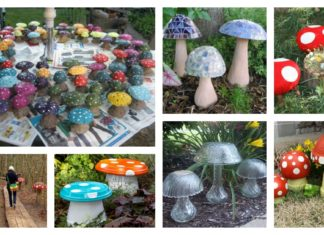 Garden Creative Mushroom Projects
