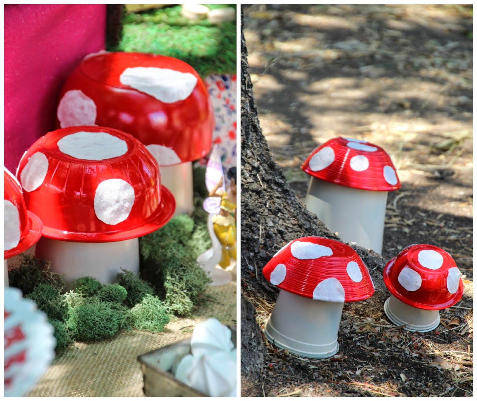 how to tell mushrooms from toadstools