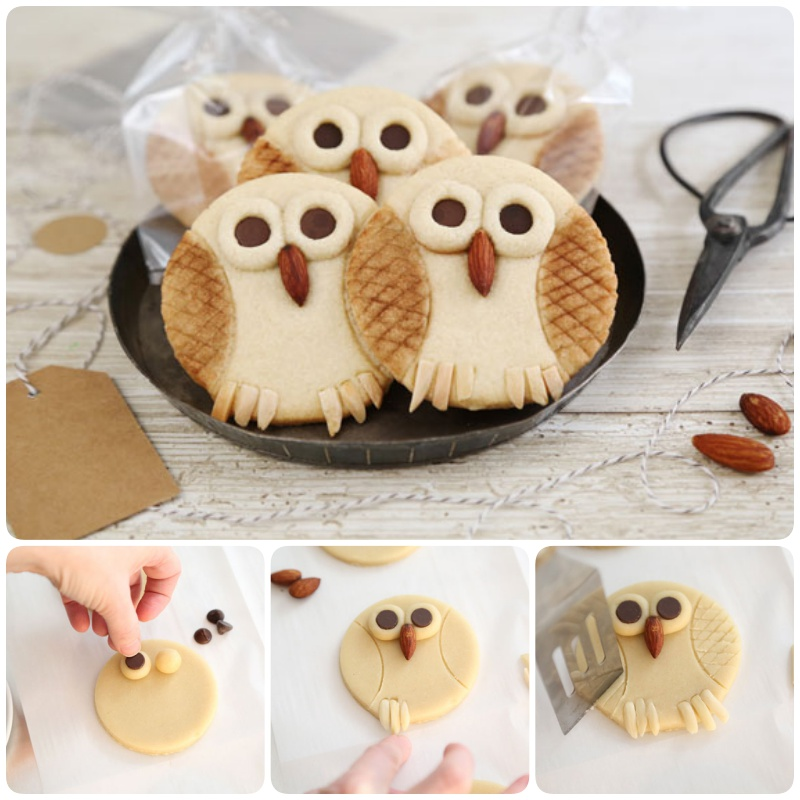 Hoot Owl Cookie Recipe