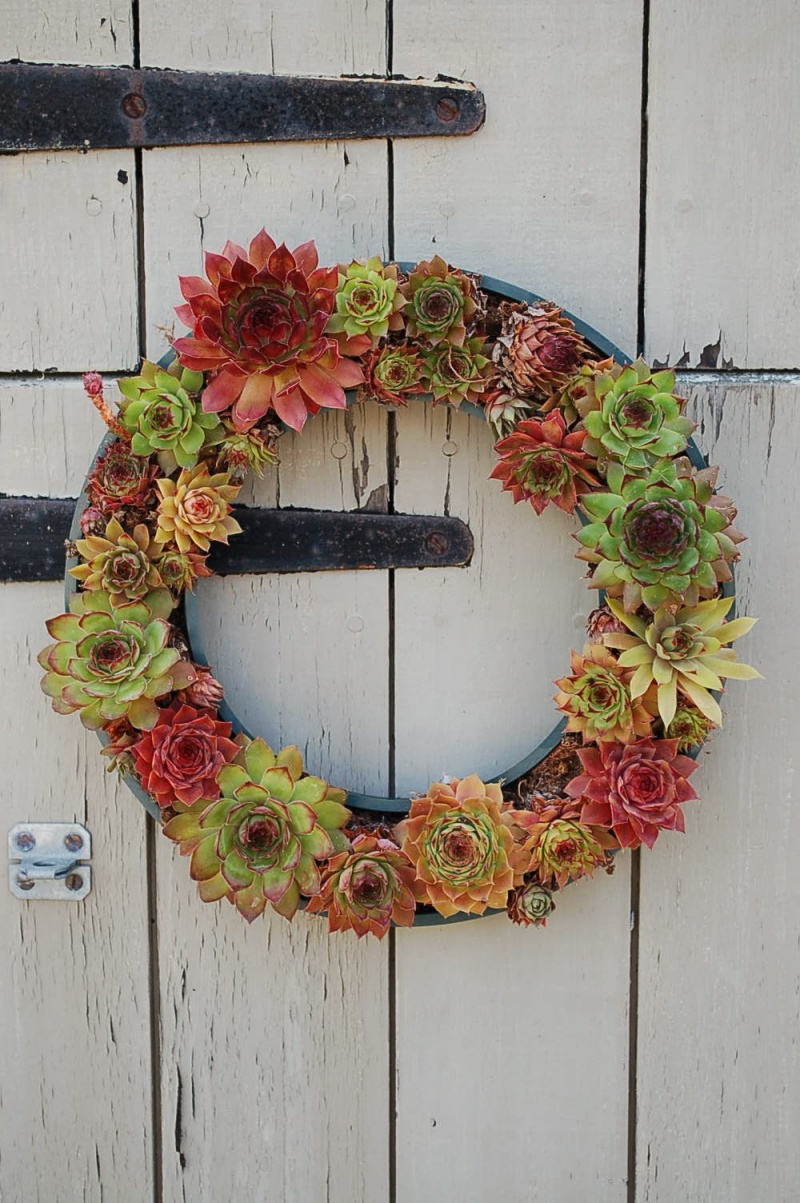 Tire Used As Base For Succulent Wreath