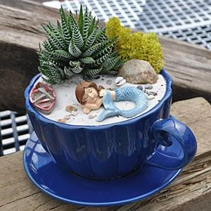 14 Cute Teacup Mini Gardens Ideas - Page 3 of 3