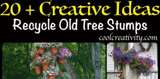 Recycle Old Tree Stump Ideas