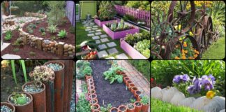 30+ DIY Garden Bed Edging Ideas