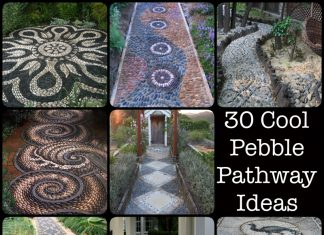 Pebble Pathway Ideas
