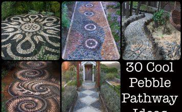 Pebble Pathway Ideas