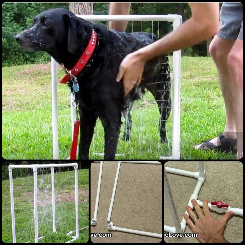 Custom Dog Washer out of PVC pipes