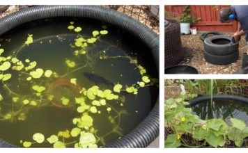 DIY Decorative Fish Pond From Old Car Tires