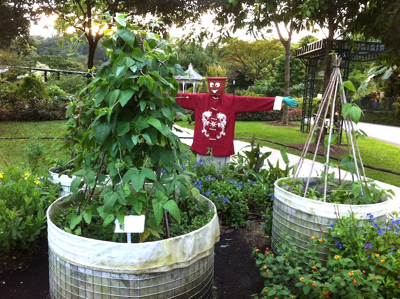 DIY Geotextile Fabric-lined Galvanised Steel Wire Mesh Raised Bed