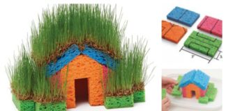 DIY Mini Grass Houses with Sponge for KidsDIY Mini Grass Houses with Sponge for Kids