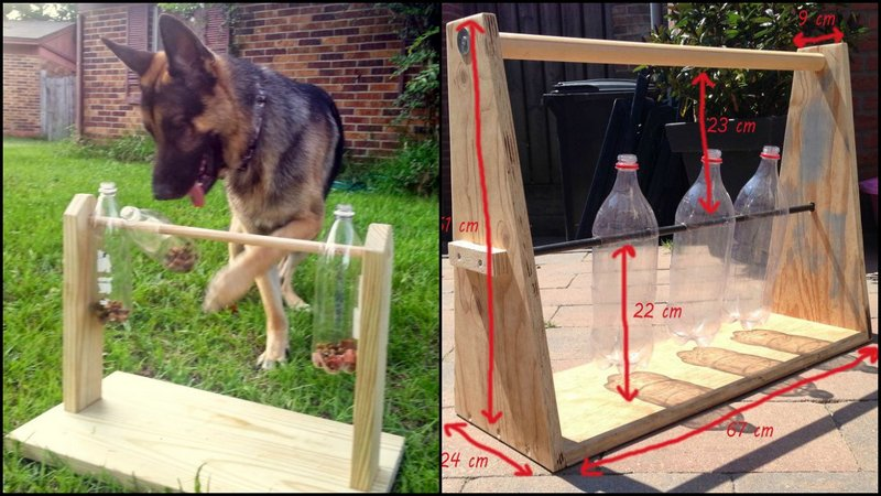DIY Spin-out Dog Treat Game with Plastic Bottle
